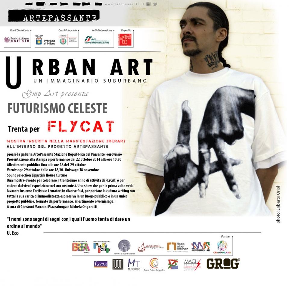flycat_cs_abstract_19.40_