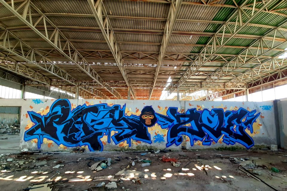 Spray_Wars-Rask-DGS-graffiti-03-goldworld